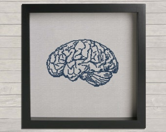 Anatomy No. 3 Brain Cross Stitch PDF Pattern, DIY Cross Stitch, wall hanging