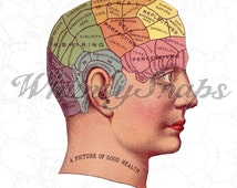 A Picture Of Good Health Human Head Color Phrenology DIGITAL IMAGE Download,  .png and .jpeg, transfer