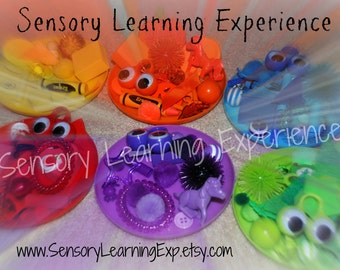 Rainbow Match Sort Waldorf Montessori Inspired Sensory