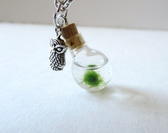 Marimo Moss  necklace Orb Marimo Moss Ball necklace - Mini Ecosphere Terrarium Necklace Live Marimo Moss Terrarium