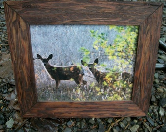 "Wooden Frame Picture of 2 Deer.  13.1/2"" inch wide x 11.1/2"" inch tall."