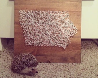 State Iowa String Art-Can Customize Any State