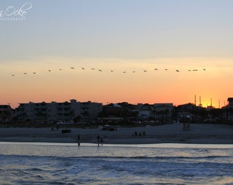 Tybee Island Birds and Beach at Sunset Photography Print