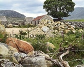 Cottage by the Tree, Mourne MOUNTAINS, Co. Down, Northern IRELAND, Idyllic Landscape, Silent Valley,Irish Photo,St. Patrick's Gift,Pub Decor