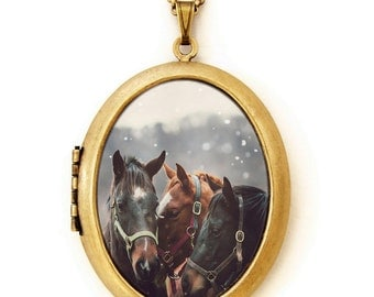 Horse Locket - Nuzzle - Dreamy Horse Trio Photo Locket Necklace