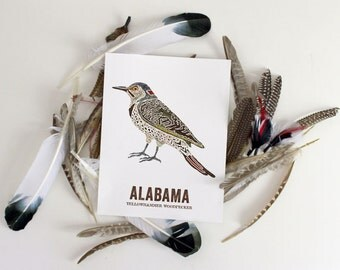 Nature inspired illustrations for outdoor by woodenpencilco alabama state bird nature art outdoor art vintage map art art print sciox Image collections