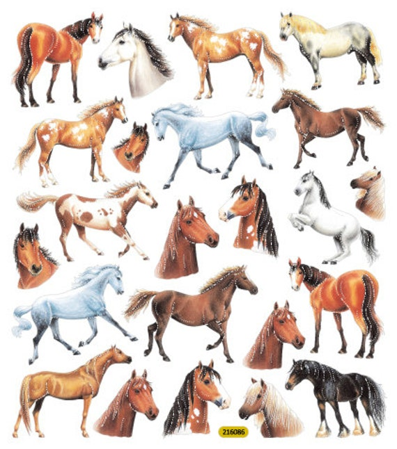 horse wrapping paper Gallop guru equine gift and equestrian jewellery emporium has an exclusive range of horse inspired greeting cards and horse gift wrapping beautiful ways to present perfect gifts to horse lovers and keen horse riders.