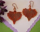 Copper Leaf Earrings Cottonwood, Small Cottonwood Leaf Earrings, Real Leaf Earrings, Copper Leaf, LESM59