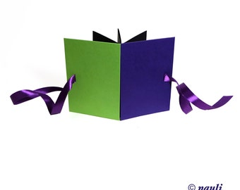 Accordion Photo Album in block colors apple green purple, small baby album