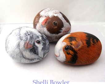 Painted Rocks by Shelli Bowler, Guinea Pigs you can order, personalized of your pet! 3-4 in. 3D stone