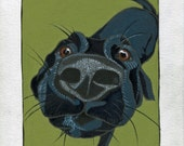 Nose & Whiskers (55) - original dog painting