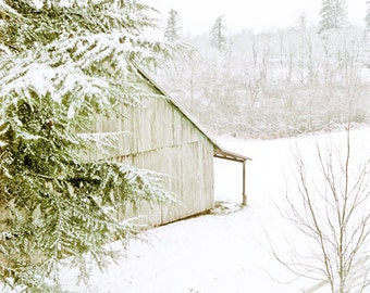 Snowy farm Photography getaway snow pine rustic field oregon calm fence rural white green crisp fresh - Just a dusting - fine art photo