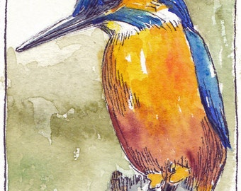 "Kingfisher - an original watercolor ACEO 2 1/2"" x 3 1/2"""