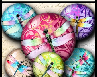 INSTANT DOWNLOAD New Colorful Dragonflies (692) 4x6 and 8.5x11 20mm circles Digital Collage Sheet glass tiles cabochon pendants images