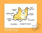 corgi anatomy - Card or Artprint