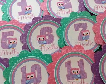 Monthly Milestone Tags: Pink Purple Teal Owls - photo banners photo prop, 1st birthday memory banner memory book babyshower -Owl monthly tag