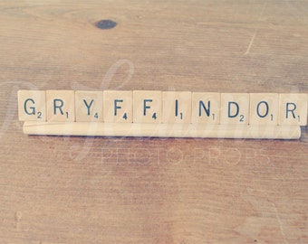 Gryffindor Sign, Harry Potter Inspired, Harry Potter Gift, Harry Potter Decorations, Harry Potter Gift, Friend Gift