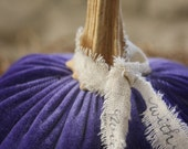 Handmade Silk Velvet Pumpkin (Periwinkle Purple Color) with Real Pumpkin Stem