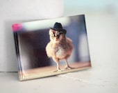 Chicks in Hats Chicken In A Miniature Cowboy Hat Cute Chickens Baby Animal Magnet