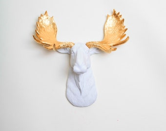 Faux Taxidermy - The MINI Glitz - Resin Moose Head Mount W/ Gold Antlers - Faux Moose Head Decor by White Faux Taxidermy Animal Ornaments