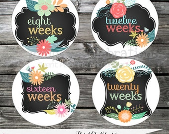 Instant Download: DIY Printable Pregnancy Stickers- Weekly Milestone Stickers -Photo Prop -Baby Shower Gift -Belly Stickers -Baby Bump