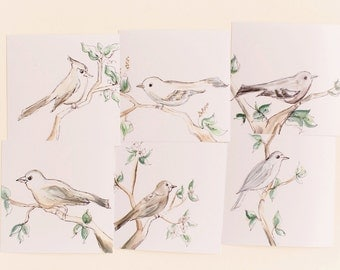 Set of 6 Bird Prints