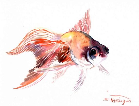Poisson rouge aquarelle originale peinture 12 x 9 in for Aquarium original poisson rouge