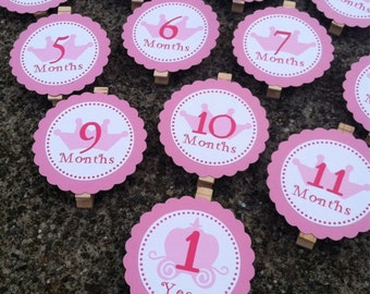 Princess First Year Photo Clips - First Year Banner - Princess Party - First Birthday Party - set of 13