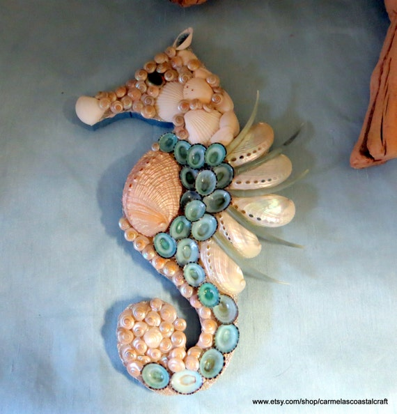 Sea shell sea horse wall art decor_Abalone and limpet shell