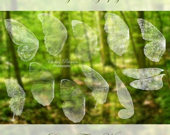 11 Fairy Wings PNG OVERLAYS SET 1, including a Tinker Bell wing, Butterfly wings and a Dragonfly wing