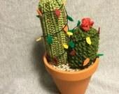 Christmas Knit Cactus!