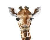 Giraffe Art Print, Giraffe, Safari Nursery, Kids Wall Decor, Giraffe Wall Art, Animal Art, Watercolor, Baby Girl, Brown, Neutral - 8.5x11