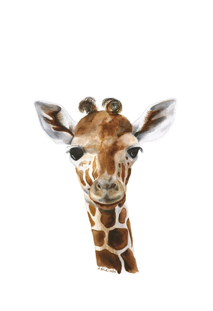 Giraffe Pictures For Kids Kids Wall Decor Giraffe