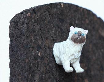 """Pushpin """"Birman cat"""""""