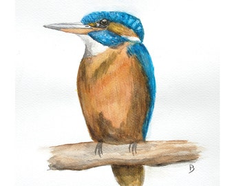 Kingfisher Original painting