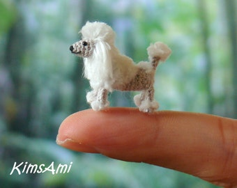 Mini Poodle dog - Miniature amigurumi tiny crochet dog - made to order - handmade. Comes with FREE handmade display box.