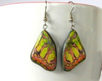 Butterfly Earrings in cold porcelain, yellow, orange & lime green.