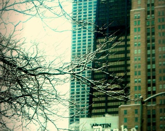 Chicago Photography, The Drake Hotel, Michigan Avenue, Chicago Photo art print, Chicago Architecture, winter, neutrals, 70s style, modern