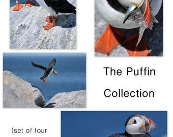 Photo Notecard Set, Blank Inside, Envelopes, Set of Four Puffin Cards, All Occasion, Gift Ideas, Atlantic Puffins, Bird Stationery,