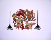 Autumn Leaves and Rake Die Cut Set Embellishments  for Scrapbooking and Paper Crafts Leaf