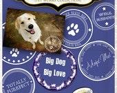 Digital Pet Rescue Photo Overlays by Papier Creatif - Pet Rescue Digital Stamps