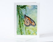 Monarch Butterfly Card, Blank Photo Note Greeting Cards, Note Cards Set, Photo Magnets, Nature Photography