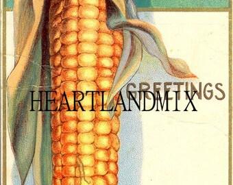 Thanksgiving Day Greetings Corn Vintage Image