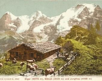 Alpine Home, Barn, Farm Animals, Switzerland, Circa 1910 Antique Semi-Unused Postcard