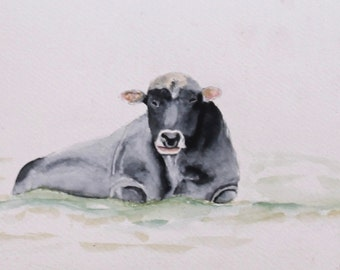 Bull has l watercolor