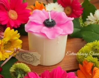 Anemone Candle *Fuchsia*