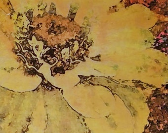 Colorful Floral Wall Art, Zinnia Yellow, Original Photo Transfer, [8.5 square]