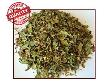 Calea Zacatechichi: Lucid Dreaming Herb