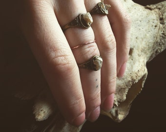 real mouse bones ring jewelry