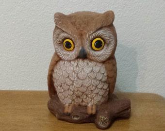 Cute Owl on log